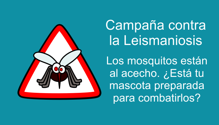 4JS_mosquito_final.png