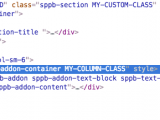 sppb_custom_css_classes_bug.png
